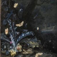 Otto Marseus van Schrieck, Stilleben med tidsel og slange, 1663. Foto Statens Museum for Kunst.