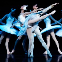Swan Lake with National Ballet of China at Theatre du Chatelet 25/09/2013 to 29/09/2013.