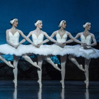 4 charming small swanes in their pas de quattre, allways a hit. Photo: Erik Berg