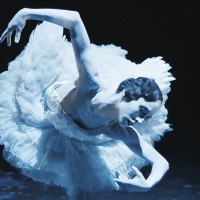 Vedlagt foto: Camilla Spidsøe iCygneav Daniel Proietto, en av ballettene i forestillingen Galla med Nasjonalballetten.Foto: Øystein Mamen, Mer Film.
